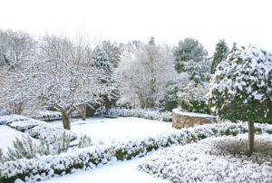 Ландшафт участка зимой